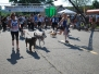 2012 Dog Events Photos